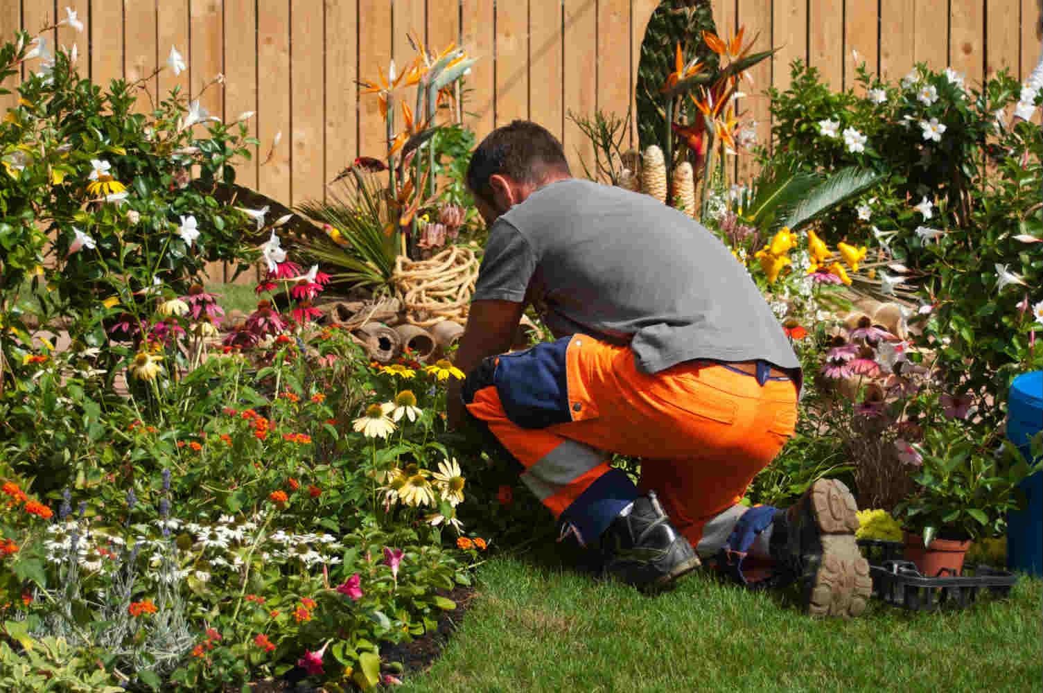 entretien jardin tournefeuille