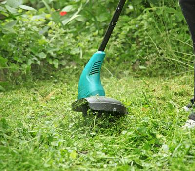 Faire tondre sa pelouse pendant ses vacances