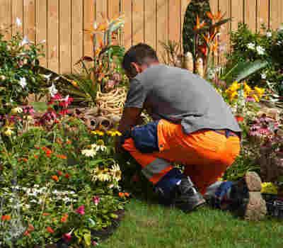 Service d'entretien de jardins déductible d'impôts à Tournefeuille